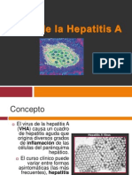 Hepatitis a Completo 120111130635 Phpapp01