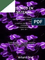Tecnico en Sistemas PDF
