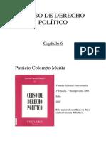 Curso de Derecho Politico - Capitulo 06