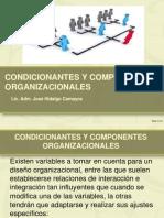 Condicionantes y Componenetes Organizacionales