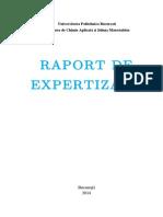 raport expertizare
