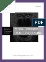 Modul Praktikum Image Processing