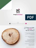 Dossier Agencia de Publicidad Imagen Consulting