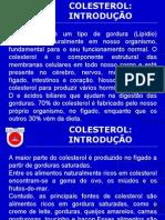 Slides Colesterol