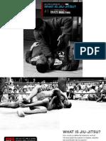 E Book What is Jiu Jitsu