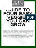 OG Guide to Four Easy Veggies You Can Grow