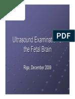 Fetal Brain