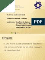 AP-Escore Corporal.pdf
