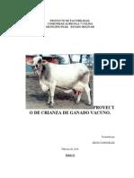 Proyecto de Crianza de Ganado Vacuno
