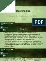 Breaking Bad8