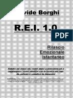 R.E.I. 1.0