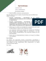 6421478-Aprendizaje.pdf