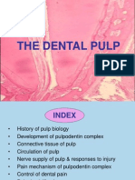 Dental Pulp Ppt