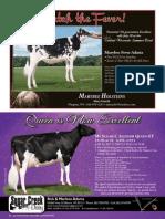 souvenir program pg 50-100 v2