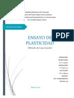 Ensayo de Casa Grande PDF...