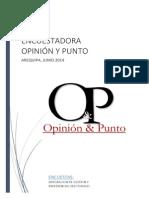 3da Encuestadora Opinion y Punto JUNIO 2014