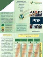 brochure de autoevaluacion.pdf