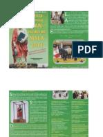 Programa San Pedro 2014