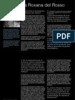 delrosso entrevista ergonomía.pdf