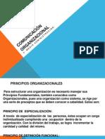 Comunicación Organizacional. Prueba 03.06