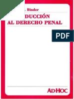 Alberto Binder - Introducción Al Derecho Penal - 1999