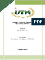 RESUMEN TUS ZONAS ERRONEAS.docx