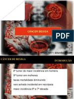 CA BEXIGA.pdf