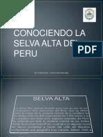 exposicionselvaaltaabelredypublicar-121015214435-phpapp02