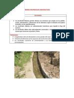 Errores Por Procesos Constructivos-colpap (1)