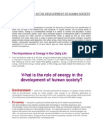 Role of Energy in the Development of Human Society