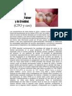 CPOD_y_ceo