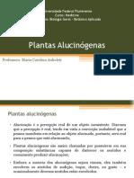 Aula 09 - Plantas Alucinógenas