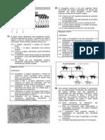 UFPE2013_biologia