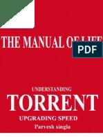 Upgrading Torrent Speed