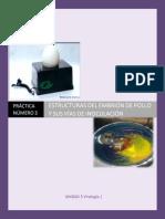 MGII Practica 14 Estructuras Del Embrión de Pollo y Sus Vías de Inoculación