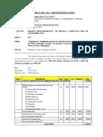 Informe Nº 035 Bruno