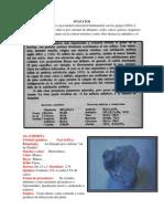 Los sulfatos son minerales cuya unidad estructural fundamental son los grupos.docx