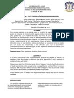 POST Indices de Madurez (1)