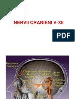 e.nervii Cranieni v-xii