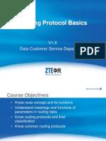 Routing Protocol Basics