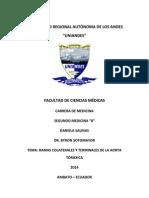 Ramas Colaterales y Terminales de La Aorta Toraxica