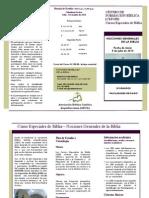 Triptico Plan de Estudio c.e.b. Julio -Nov (1)