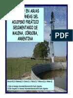Blarasin Panel III Arg (Bolivia 08)[1]