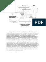 Regulación de Las Células Luteales Pequeñas