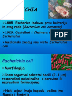 E. coli 2014