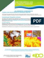Soluções de Geomática para Inventários da ANEEL - 2DO Engenharia