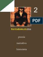 Llantodemudo Numero 2