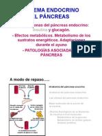 Capi_tulo_5._Pancreas_endocrino_2.pdf