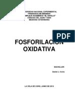 Definición de Fosforilación Oxidativa