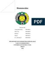 Homunculus Paper
